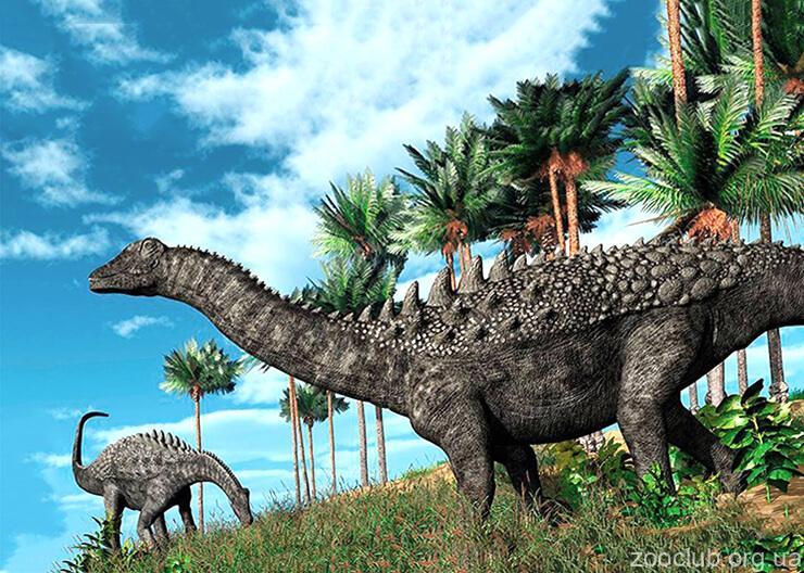 Diplodocus longus фото