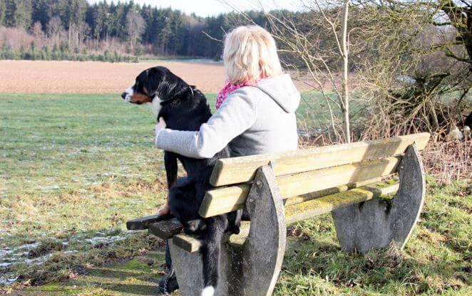 Дресировка собак на природе