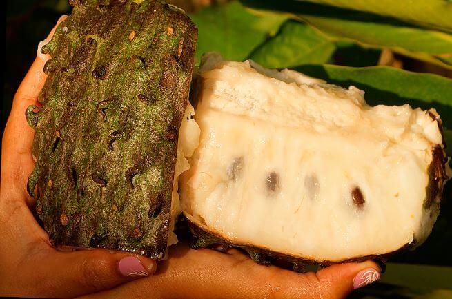 Фото семян гуанабаны