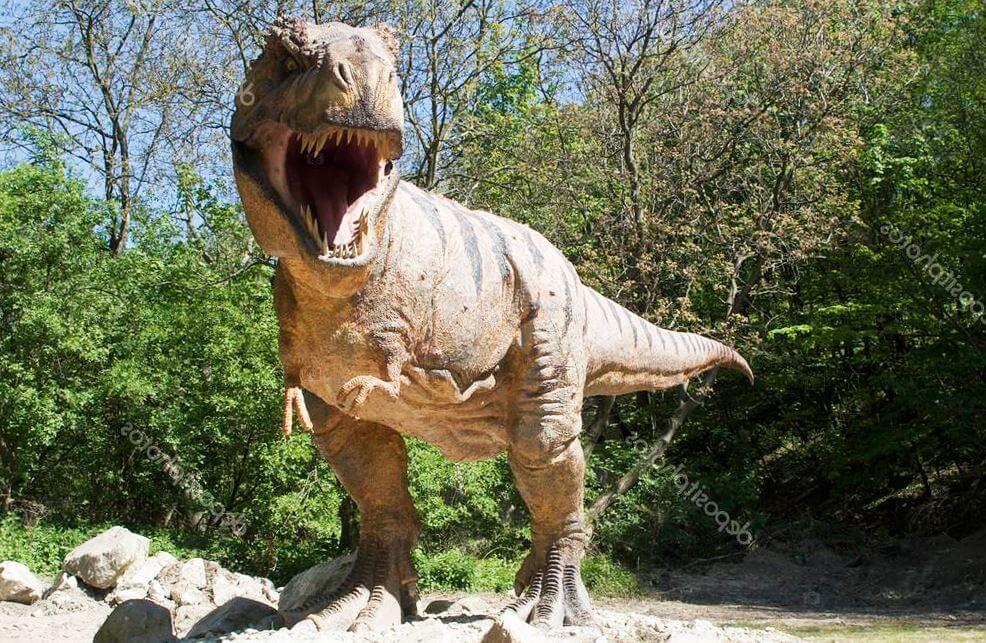 Картинка с тираннозавром