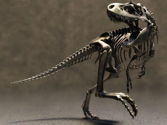 1111 Найдены сохранившиеся клеточные структуры динозавров