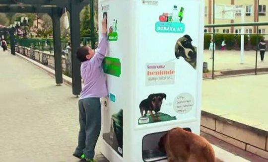155 Новый метод кормления бездомных животных