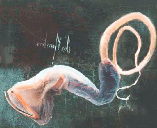 Картинка с бутылкообразным мешкоротом