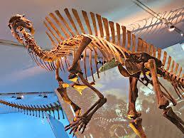 1374763536 u22 Уранозавр.